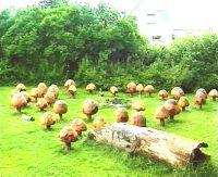 paddehatte-baalplads