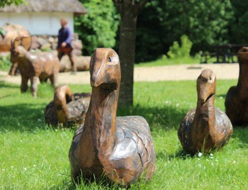 Husdyr til Den Fynske Landsby – 2